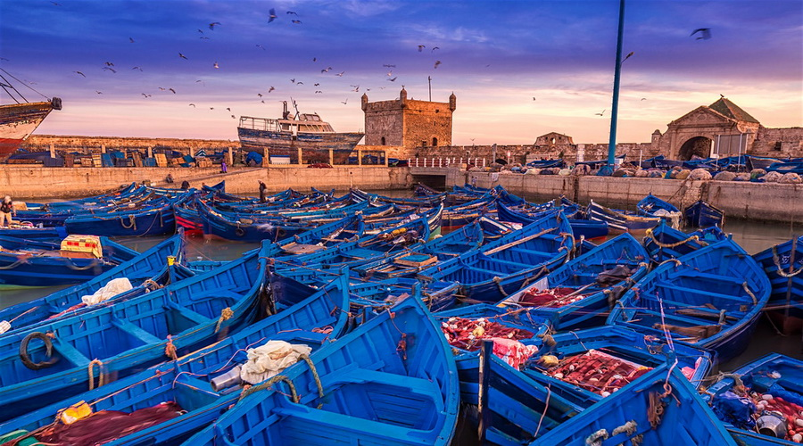 Hire My Guide - Essaouira
