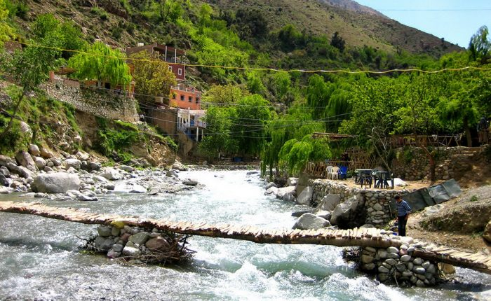 Ourika Waterfalls Day Trip