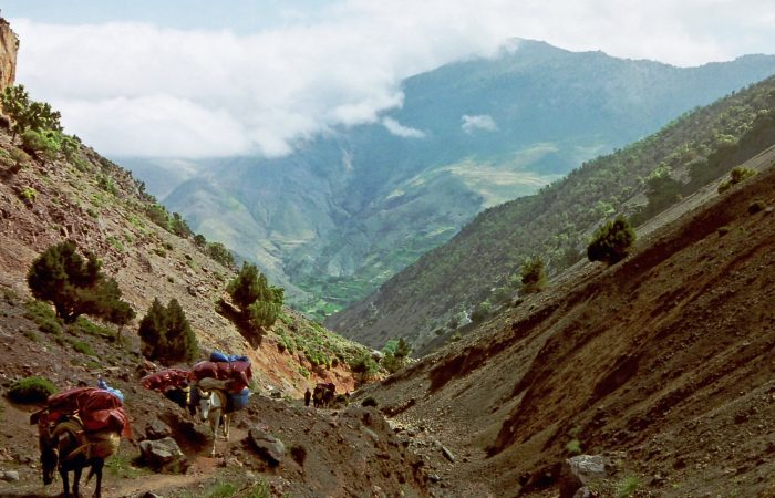 Berber villages and Toubkal trail - 6 days