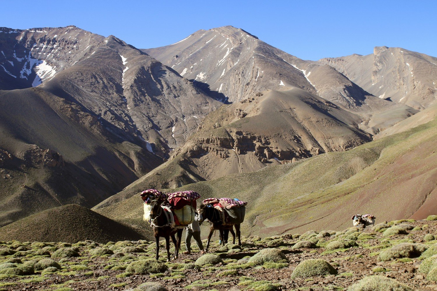 High Atlas challenge - 8 days 03